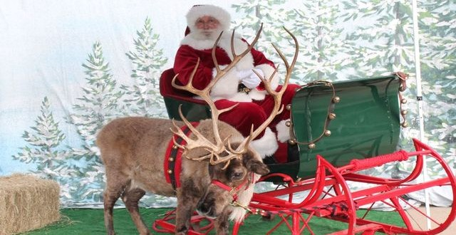 Santa and LIVE reindeer to visit the Children's Museum of Houston!