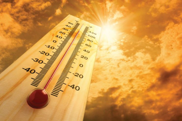 HFD gives simple tips to keep safe and healthy during hot weather