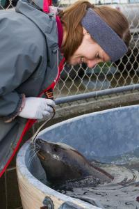 Moody Gardens Biologist and Ravioli at Northcoast Marine Mammal Center